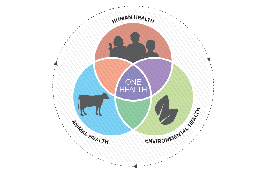 a diagram of the intersection of human, animal, and environmental health